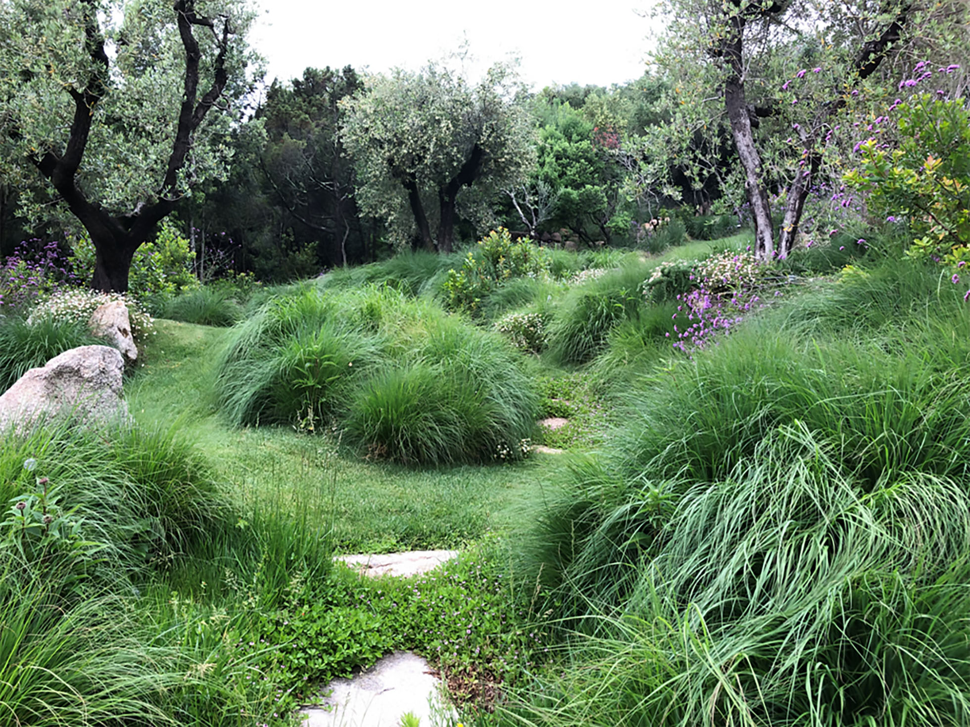 Progettazione giardini Florgallura Olbia - Costa Smeralda